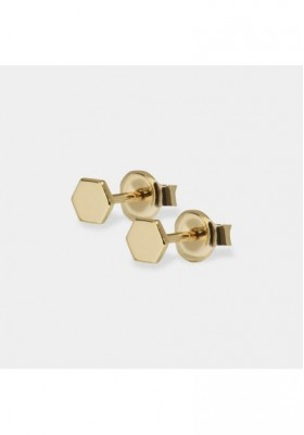 Earrings Woman Essentielle Cluse gold CLUCLJ51006